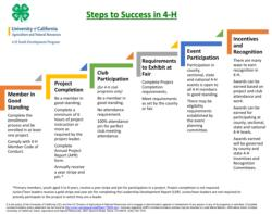 Steps to Success in 4-H
