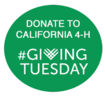 Give Tuesday 1